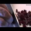 SALMOREJO CORDOBÉS (Cofradía Gastronómica del Salmorejo Cordobés)