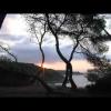 WAFFLES (CON CARRERA Y CHAPUZÓN)