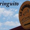 La Guingueta de l'Escribà I Chiringuito en Barcelona